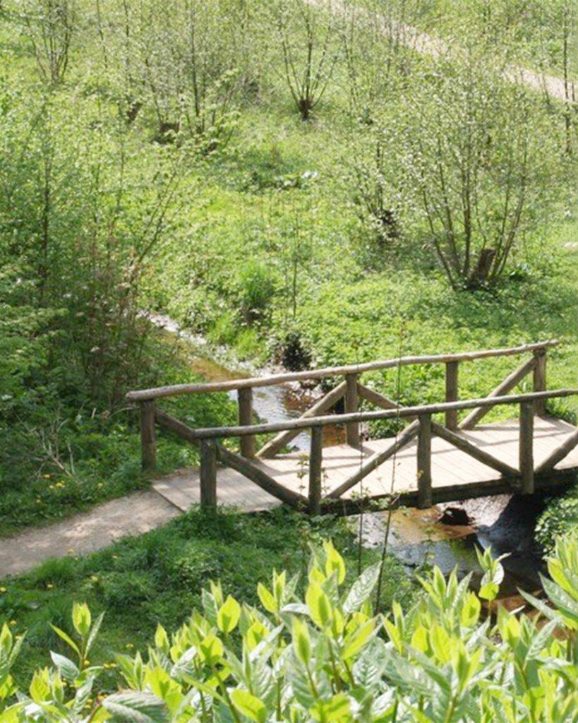 Sti og træ bro i grønt parkområde