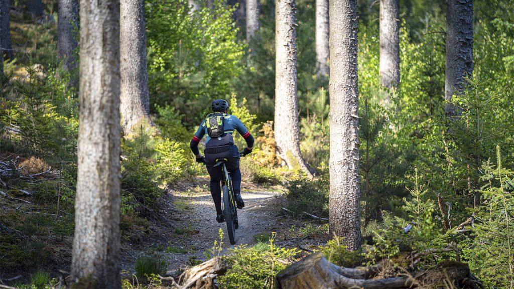 MTB rytter i skoven mellem træer