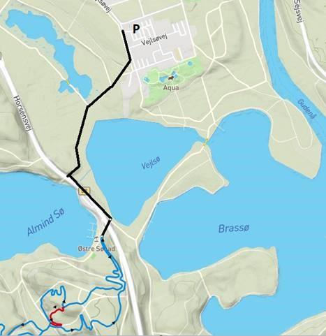 Rute fra p-plads til MTB spor i Vesterskoven